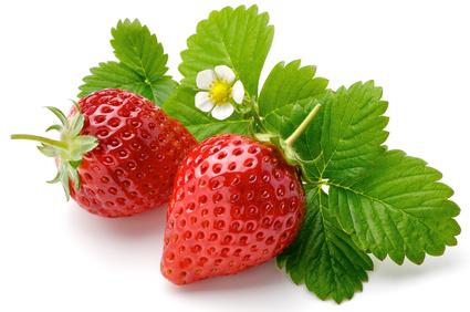 Frühling: Erdbeerzeit