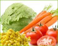 Neue Salatkarte